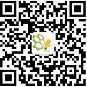lALPDgQ9r01cZVvNARfNARY_278_279.png_620x10000q90g.jpg