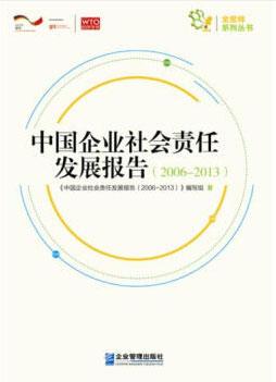 发展报告2006-2013-大图.jpg